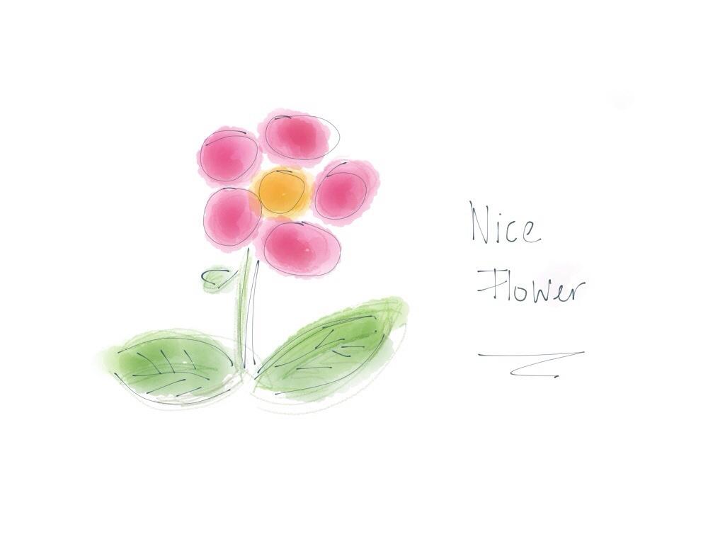 a nice flower